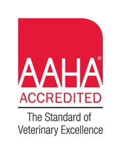 AAHA Accredited Veterinarian in Beaverton, Oregon