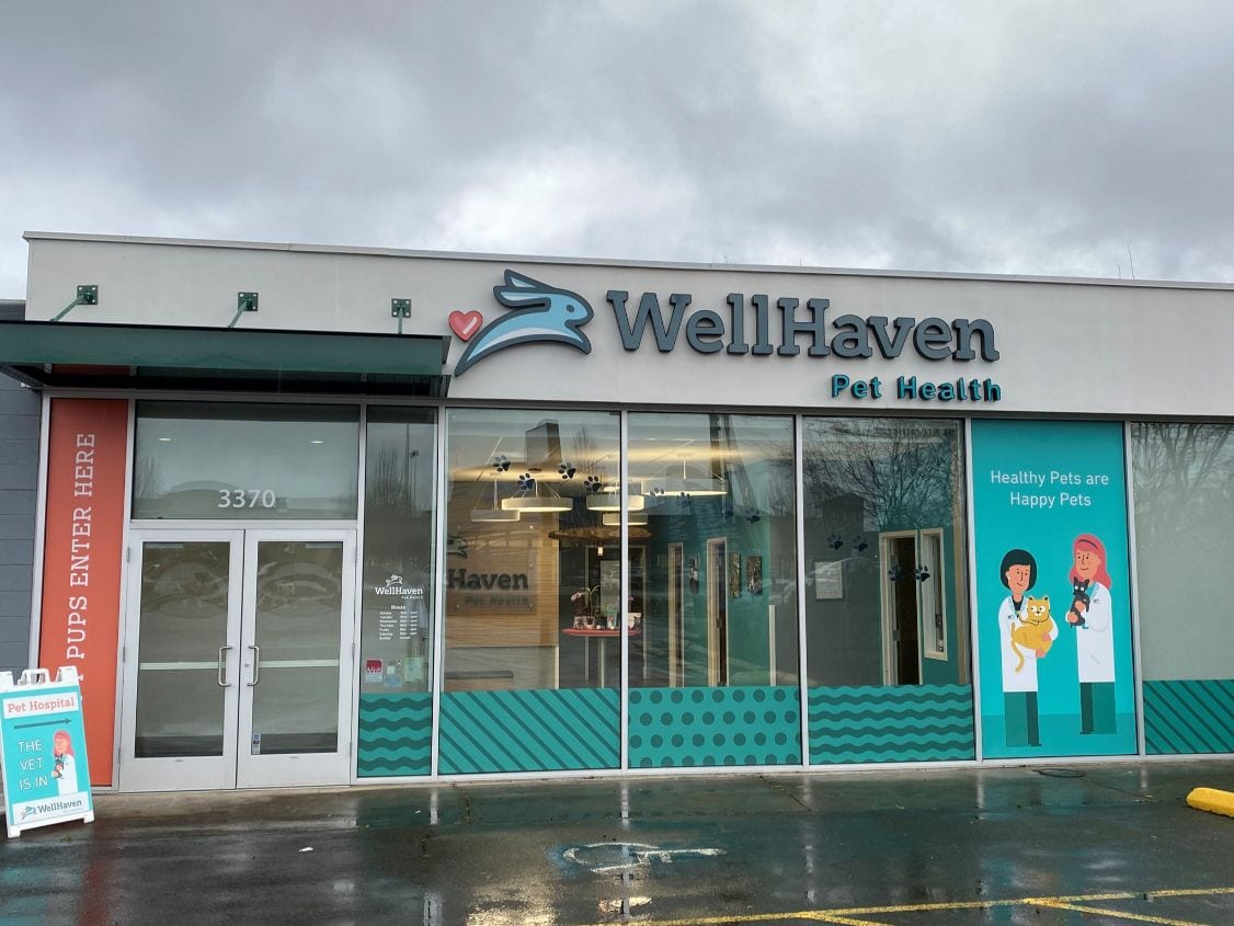 Veterinarian in Beaverton, Or - WellHaven Pet Health Cedar Hills